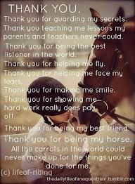 Pin By Maggie Mruk On Equine Therapy Pinterest Horse Quotes