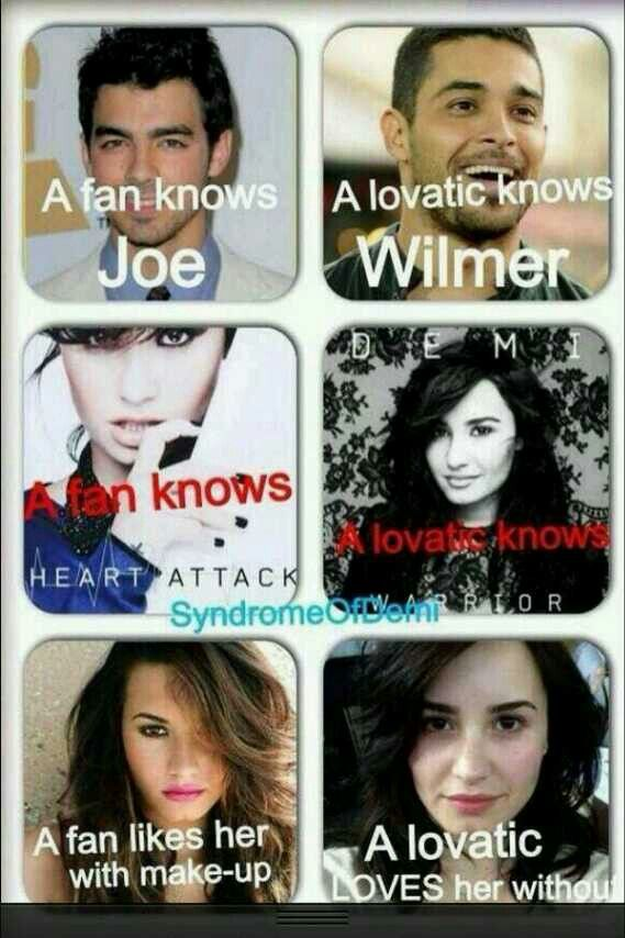 The difference between a Lovatic and a Fan I'm a lovatic ...