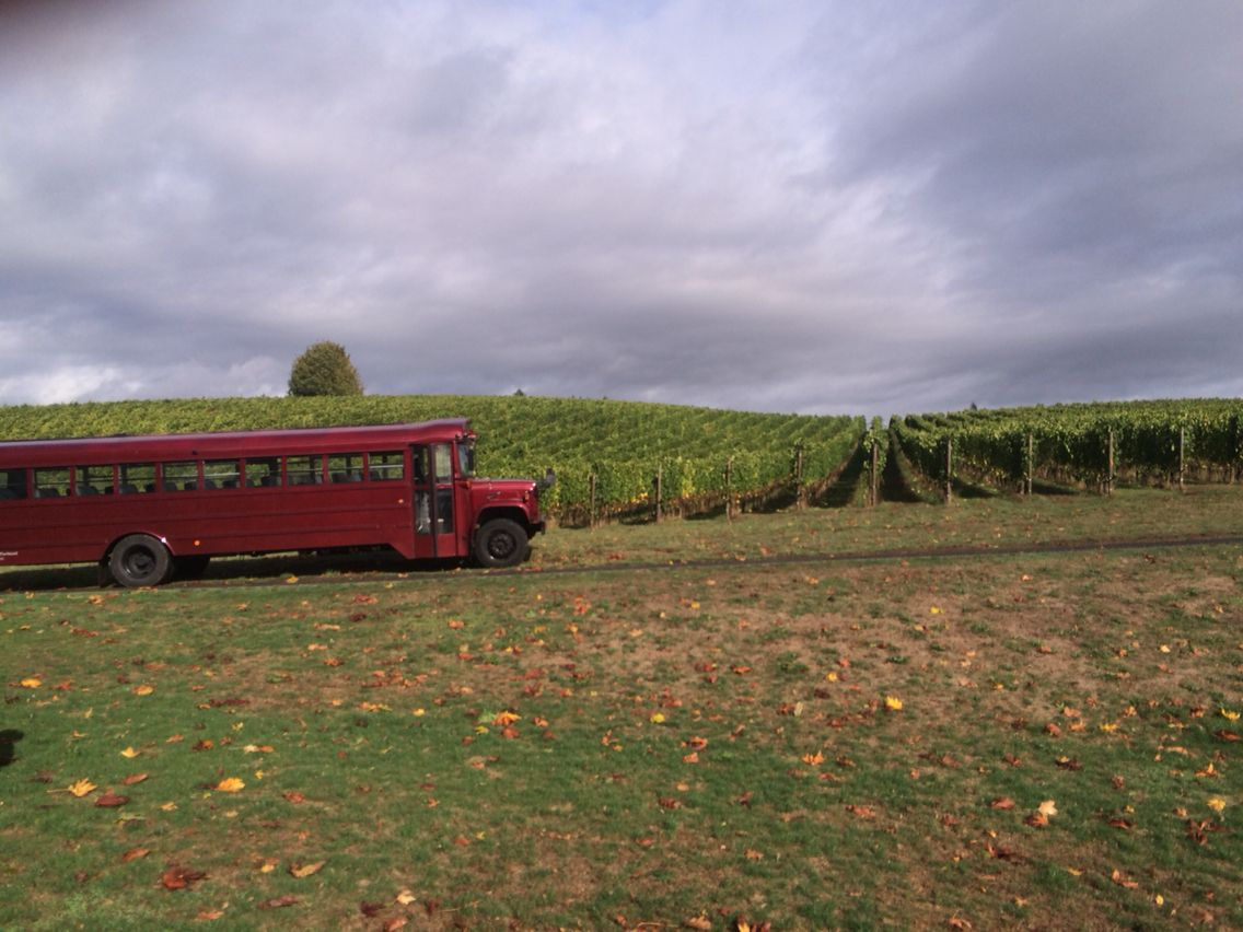 Our Burgundy Bus That Ferries Guests To And From The Vineyard Feryys Maroon Shanghai Tours