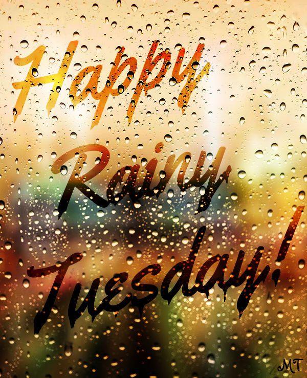 Rainy Tuesday : rainy, tuesday, Rainy, Quotes