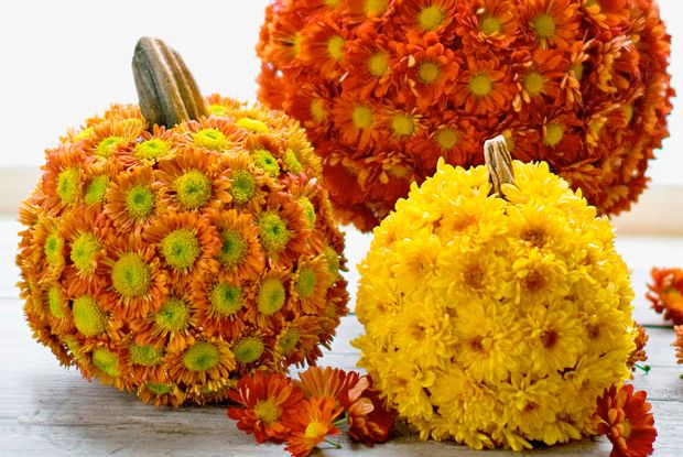 Mumkins (mum-covered pumpkins) make gorgeous centerpieces. Get the how-to.