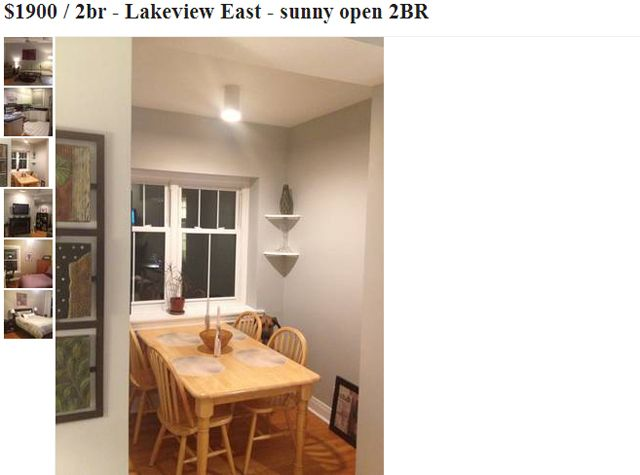 Dog Photobombs Every Picture In Craigslist Apartment Listing Animals Dogs Apartment Listings