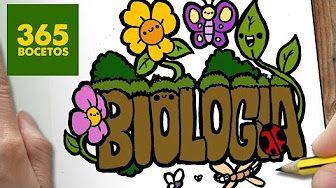365 Bocetos De Biologia Youtube Caratulas Para Cuadernos