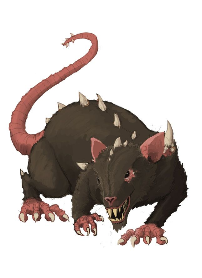 Dire Rat | Fantasy creatures art, Fantasy monster, Cute rats