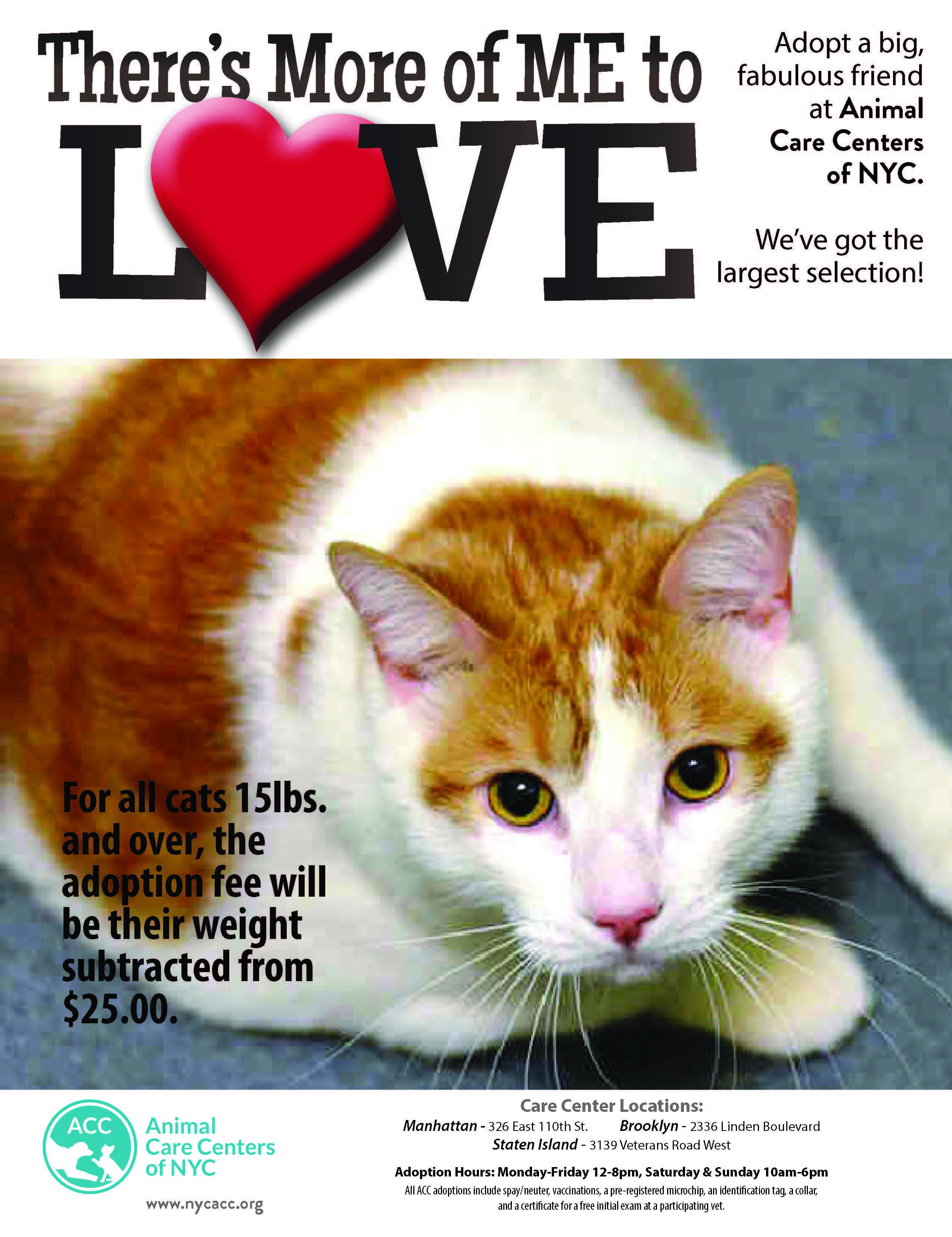 Animal Care Centers Of Nyc Acc Nyc Acc Pet Care Animals
