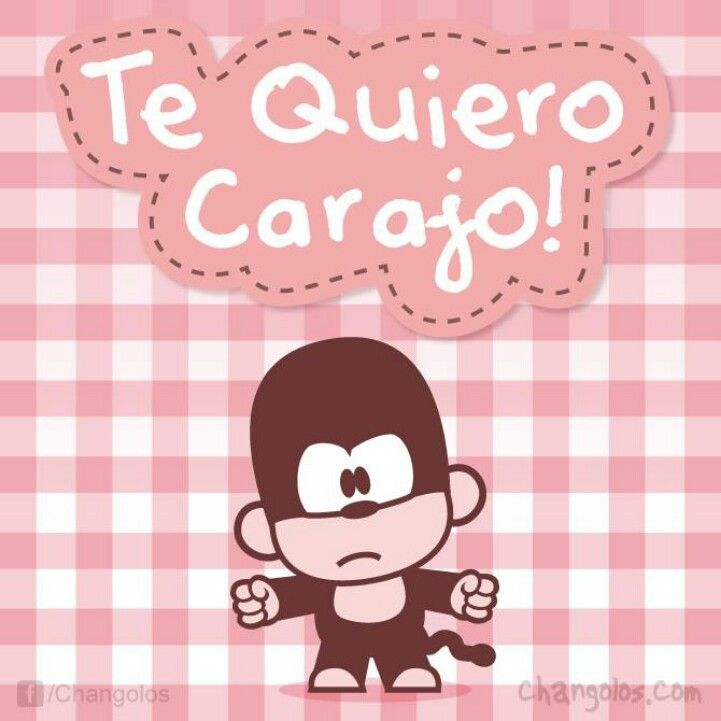 Te Quiero Carajo Changolos Pinterest Te Quiero Amor Y Frases