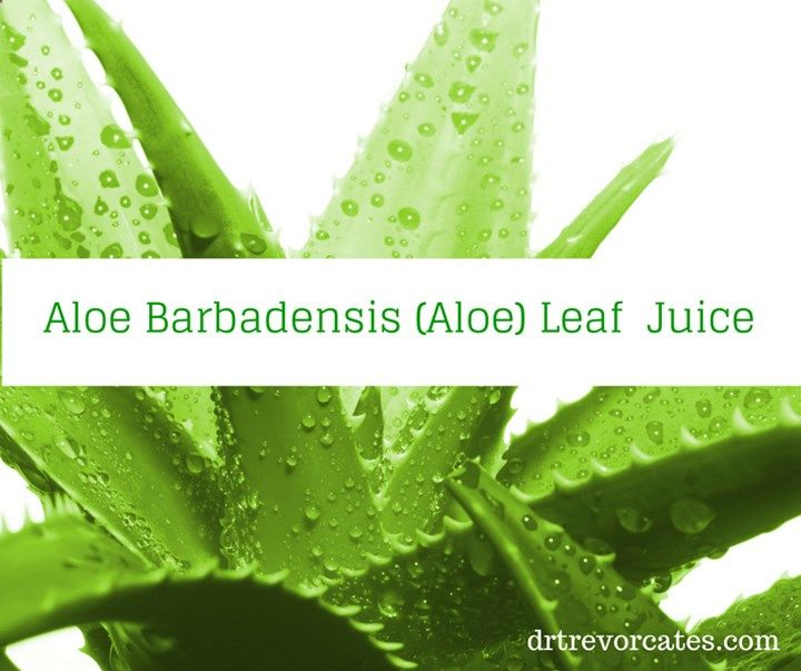 Say Alo To Aloe Vera Scientists Have Discovered Over 200 Nutritional Substances In Aloe Barba Home Remedies For Pimples Natural Oils For Skin Pimple Treatment