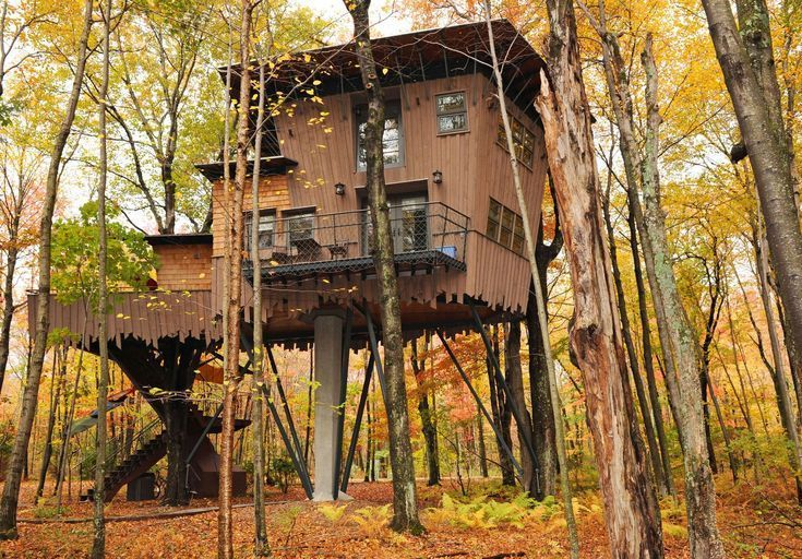 Epic tree houses that you can actually rent by Lu