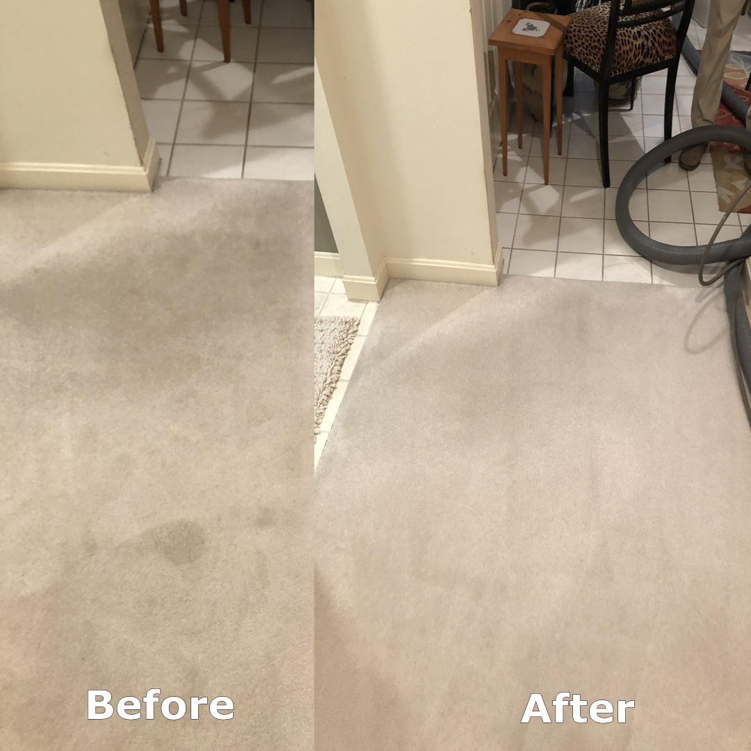 Before And After Carpet Cleaning In The Entry Kitchen How To Clean Carpet Carpet Cleaners Pet Cleaning