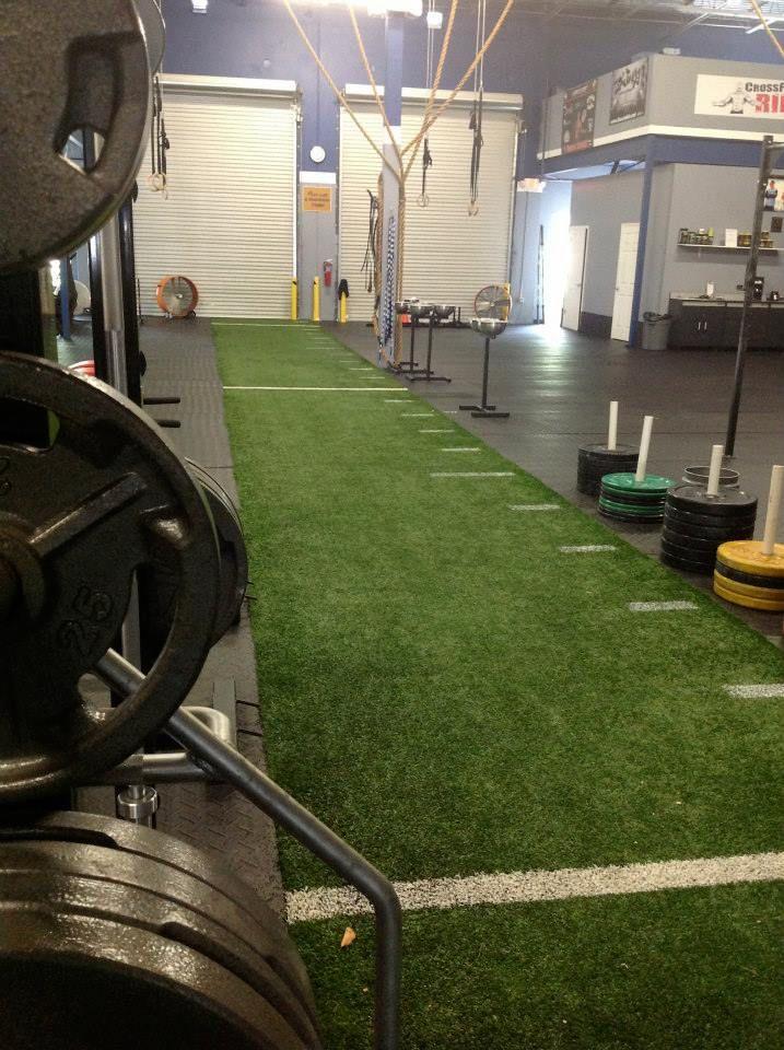 Turf gator turf in indoor gym warehouse gym gym