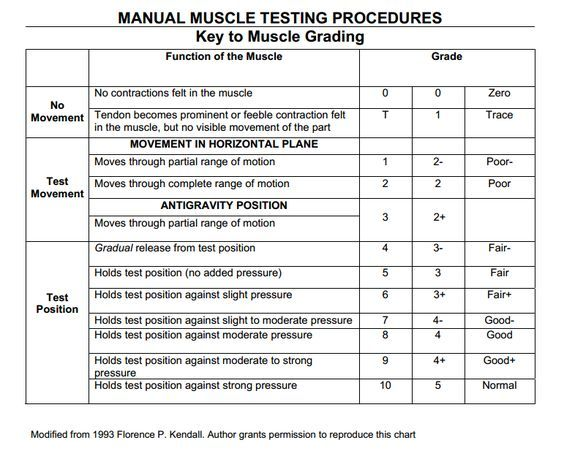 Sample Physical Therapy Evaluation Berg Balance Scale Google Search