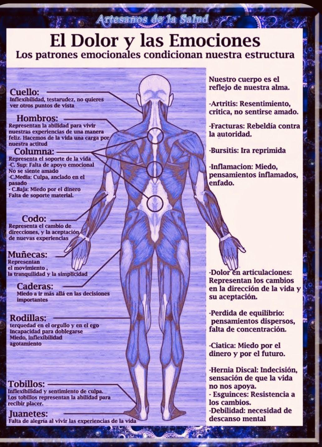 Pin De Francisca Diaz Moriel En Naturopatia Dolor Y Emociones Enfermedades Y Emociones Enfermedades Emocionales