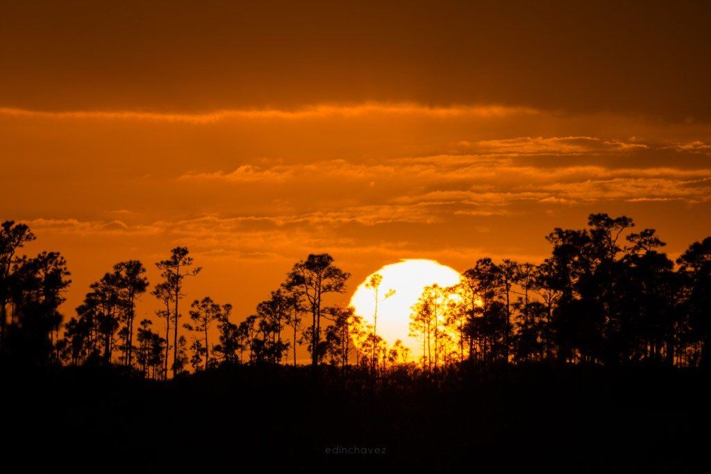 Sunset in the Everglades Florida by Edin Chavez #miami #florida #miamibeach #sobe #southbeach #brickell #visitflorida @edinchavez