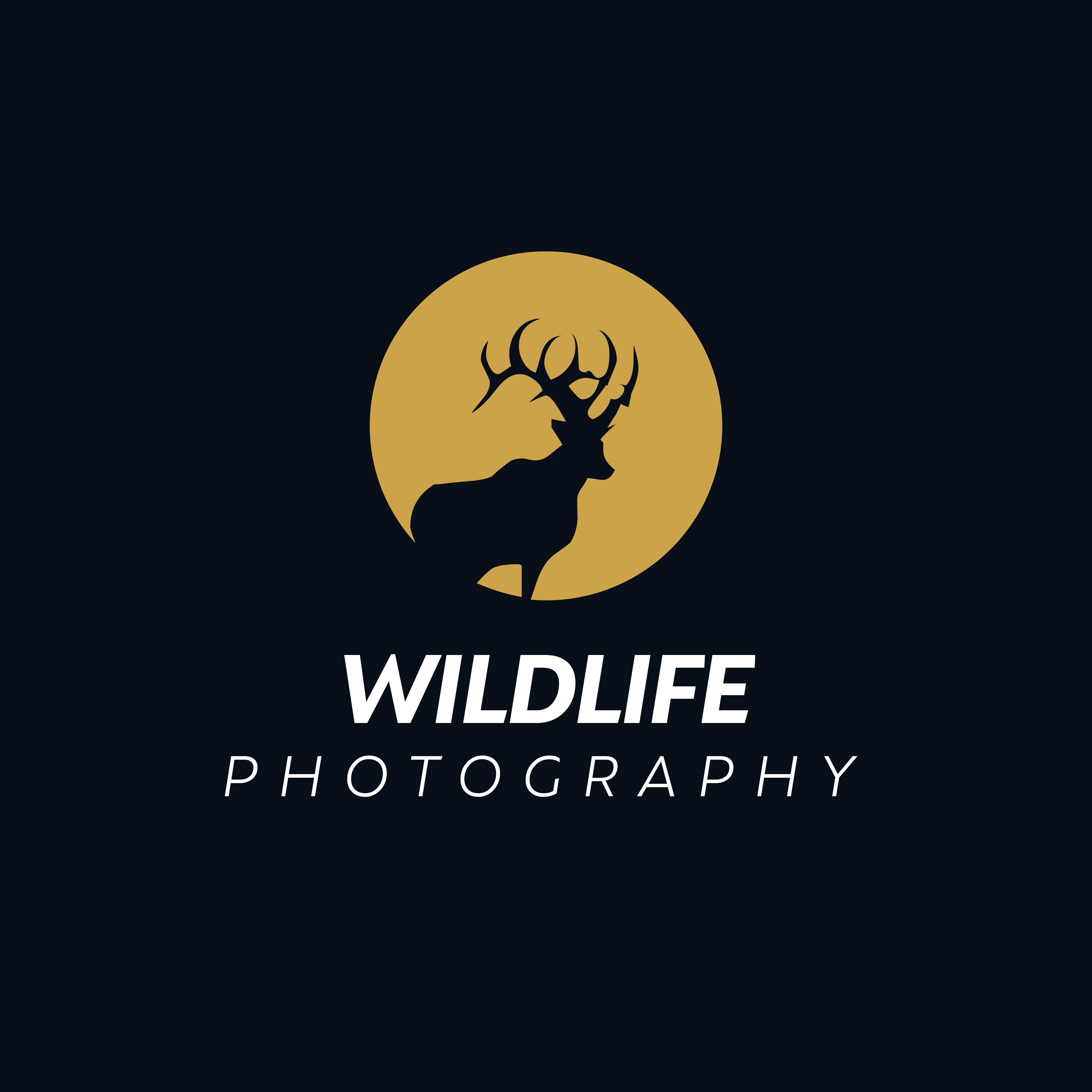 Deer Vector Logo Design Wild Animal With Horns Quality Stylish Modern Illustrations In The Style Of Vector Logo Design Pet Logo Design Vector Logo