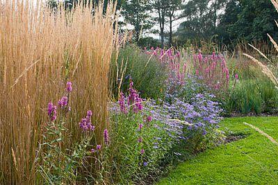 Ellicar Gardens Nottinghamshire By Clive Nichols Great Combination Of Perennials And Grasses Idee Giardino Giardino Idee