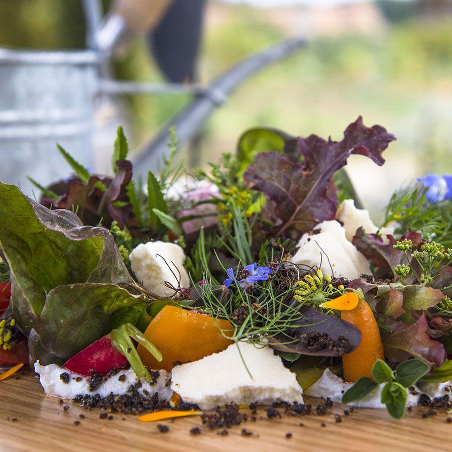 Gastronomie Domaines des étangs, hôtel de luxe à Massignac © Pluris