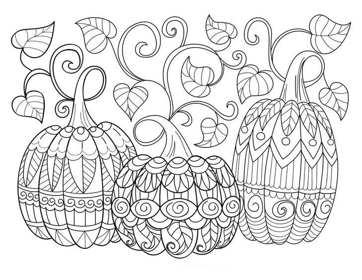 Pumpkins Zentangle Coloring Page Pumpkin Coloring Pages Free Halloween Coloring Pages Fall Coloring Pages