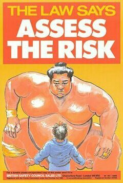 Risk Assessment Campaign Poster  Always Assess The Risks