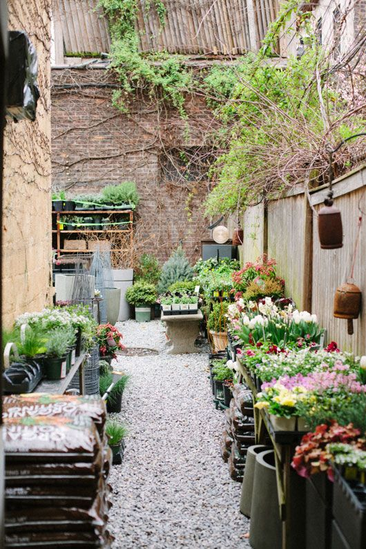 a GRDN grows in brooklyn | Garden shop, Florists and Gardens