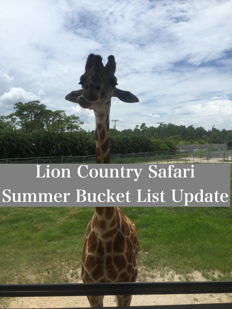 Lion Country Safari in West Palm Beach by Happy Family Blog