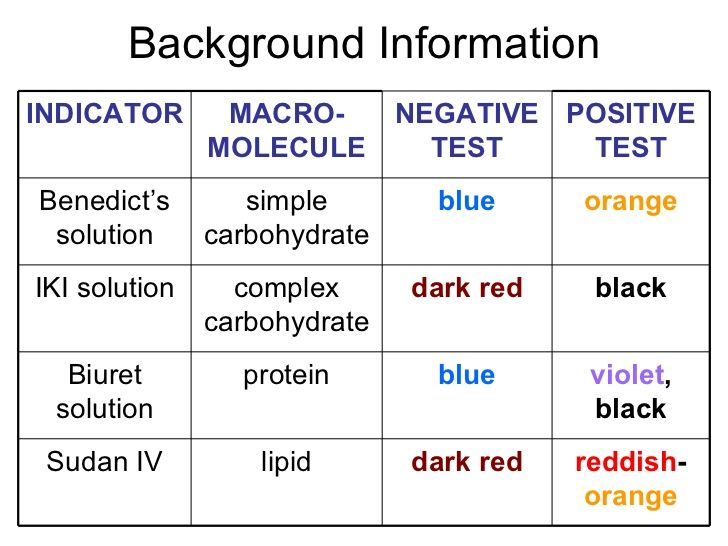 Identifying Macromolecules In Food Biologia Pinterest High - background report