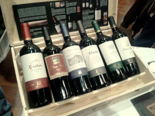 5a7a0df2c Dicas de compras do vinho no Chile