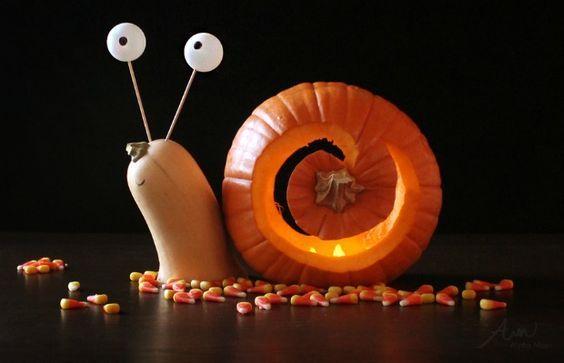 DIY Halloween Deko- und Bastelideen; So verhext du dein Heim! #pumkinpaintideas