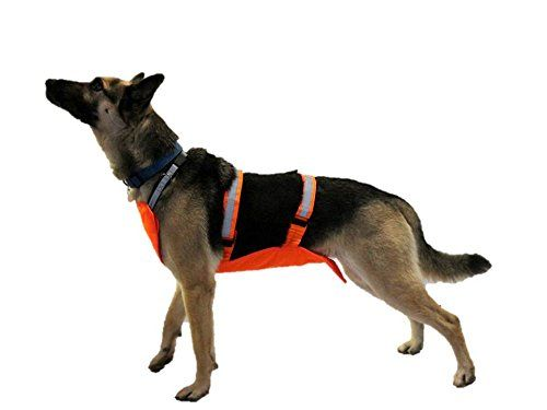 Dog Hunting Vest Underbelly And Chest Protection Xlarge To View