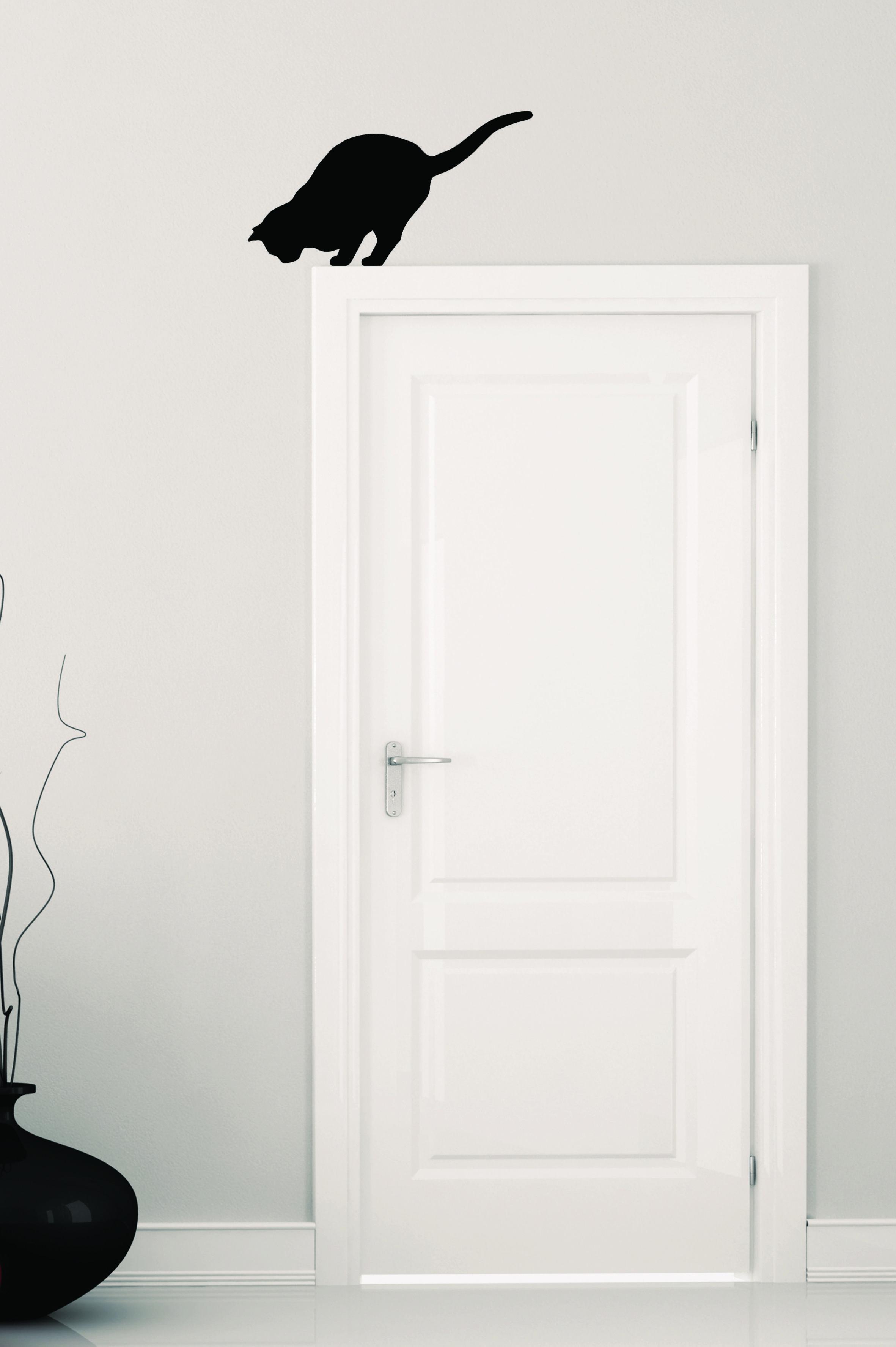 Ombre de chat sur la porte