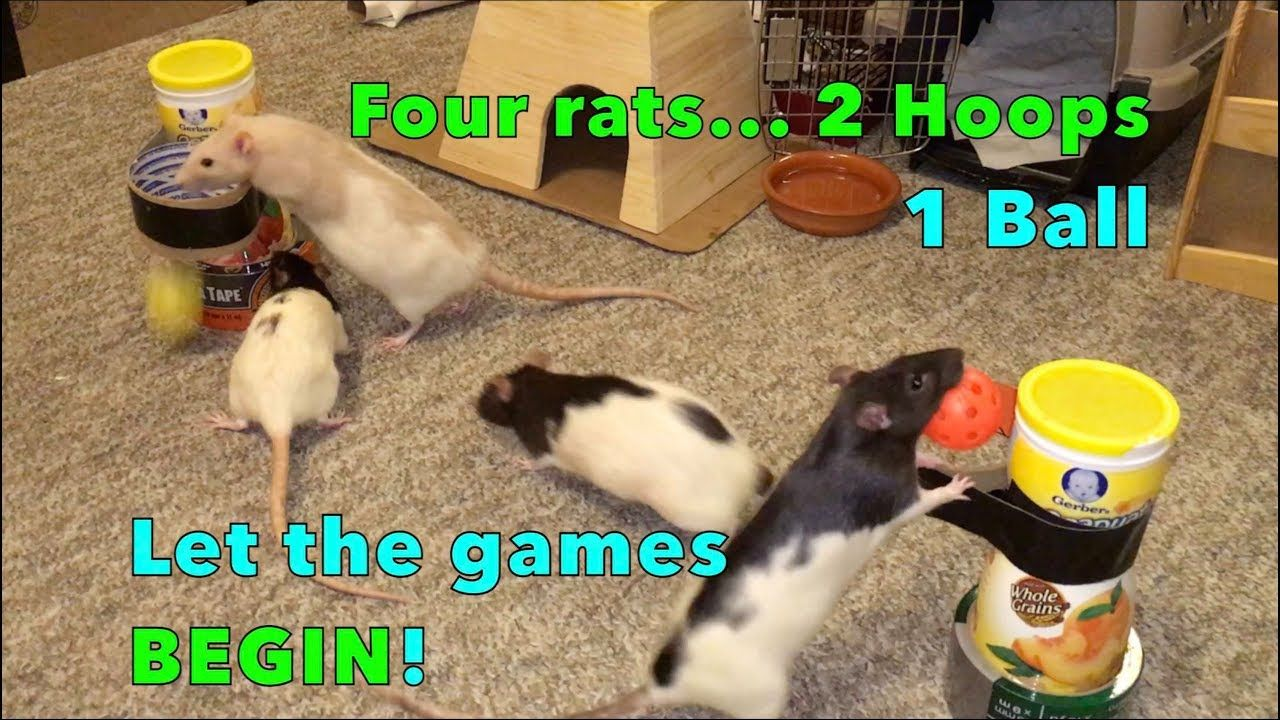 From shadow the rat in youtube she posts many tutorials