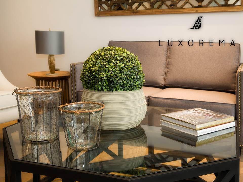 Dale frescura y vitalidad a tus interiores con flores y plantas como - decoracion de interiores con plantas