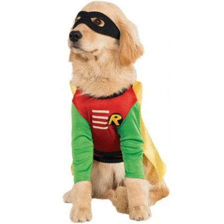 Party Occasions In 2019 Pet Halloween Costumes Dog Halloween