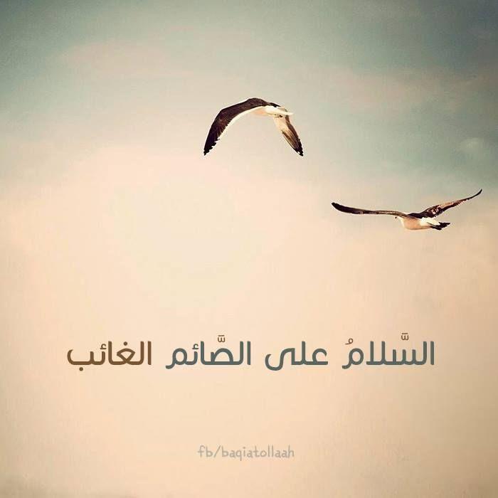 السلام عليك يا بقية الله في أرضه Prays The Lord Arabic Quotes Quotes