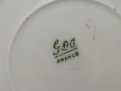 Old Antique Ch Field Gda Haviland Limoges China Serving Plate W