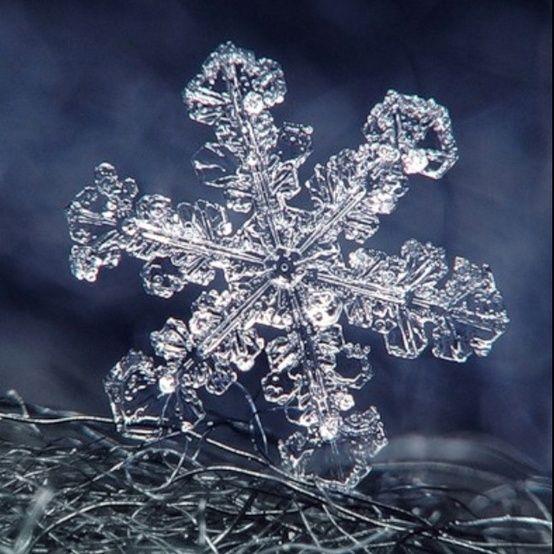Free Snowflake Patterns   Snowflakes