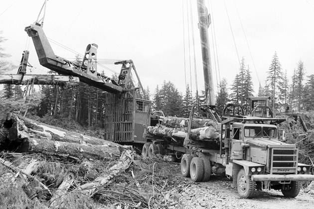 Pin by Robert Thompson on Logging | Logging equipment, Log