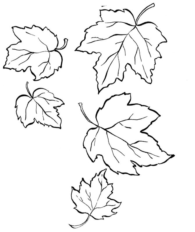 A Forked Leaves Fall Coloring Pages | Thanksgiving Printables ...