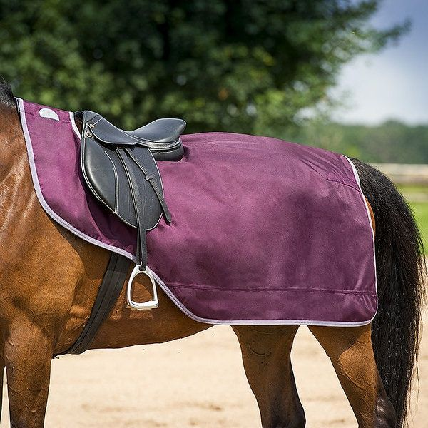 Equi Theme Tyrex 1680d Thermal Dry Lined Exercise Sheet 52 99 Free Delivery Exercise Sheets Reins Horse Rugs