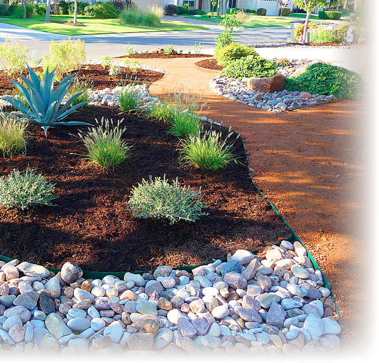 pin t landscaping front
