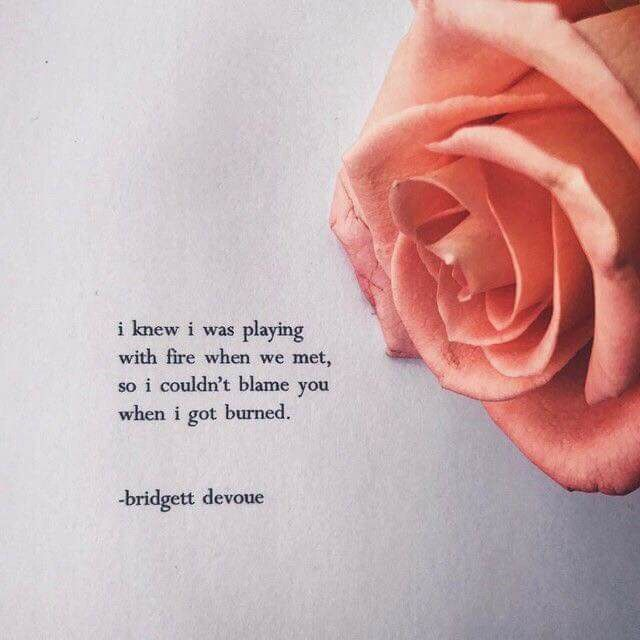 Rose In Thorns All About Love Pinterest Quotes Life
