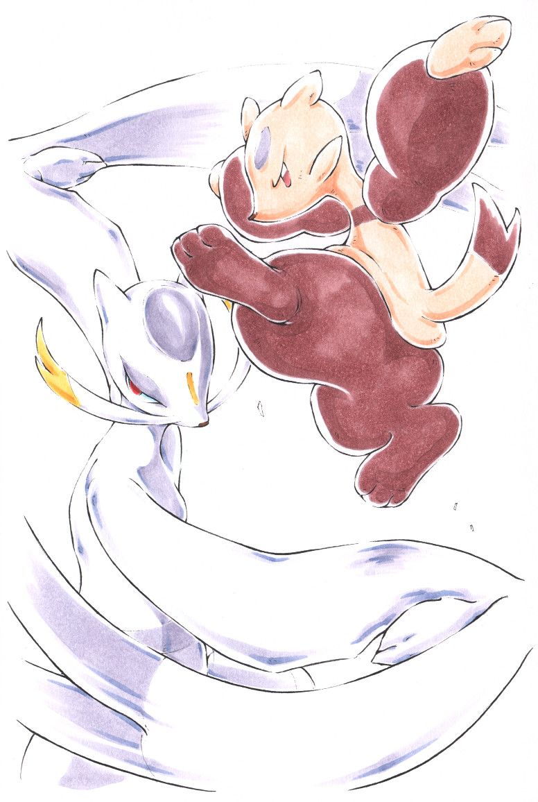 Mienfoo Mienshao Dibujos Pokemon Arte
