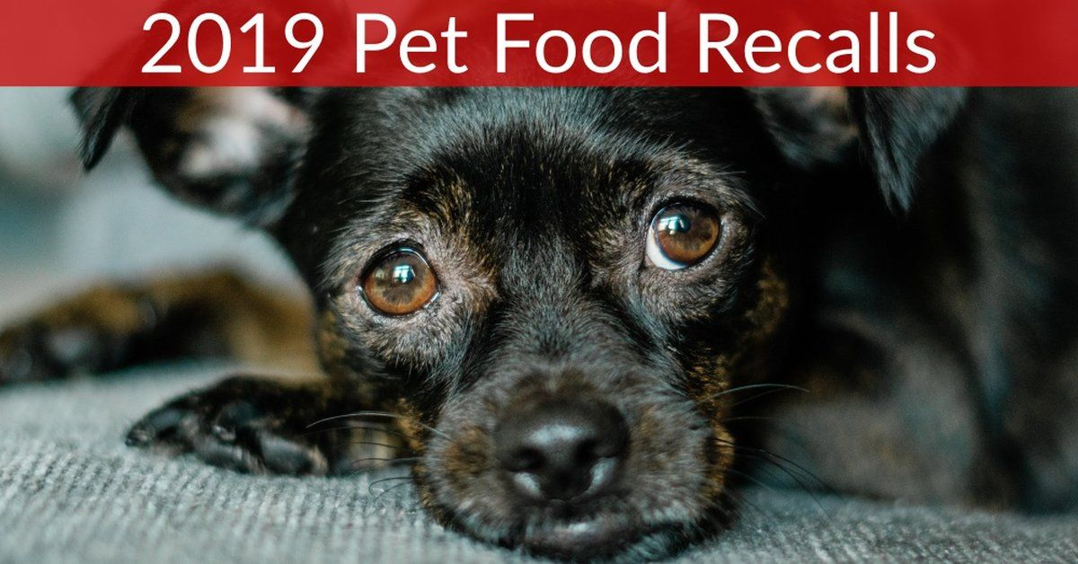 RECALL ALERT Pet Food Recalled In 2019 Dog names, Food