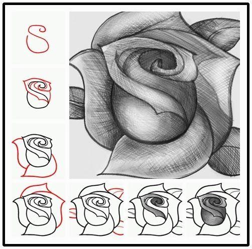 Tutorials Crafts Draw Rose Diy How Diy To Adiy How To Draw A Rose Diy Crafts Tutorials Drawings Drawing Tutorial Cool Drawings