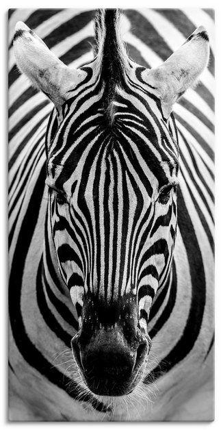 Photo of Artland Kunstdruck Poster »Markus van Hauten: Zebra« online kaufen | OTTO