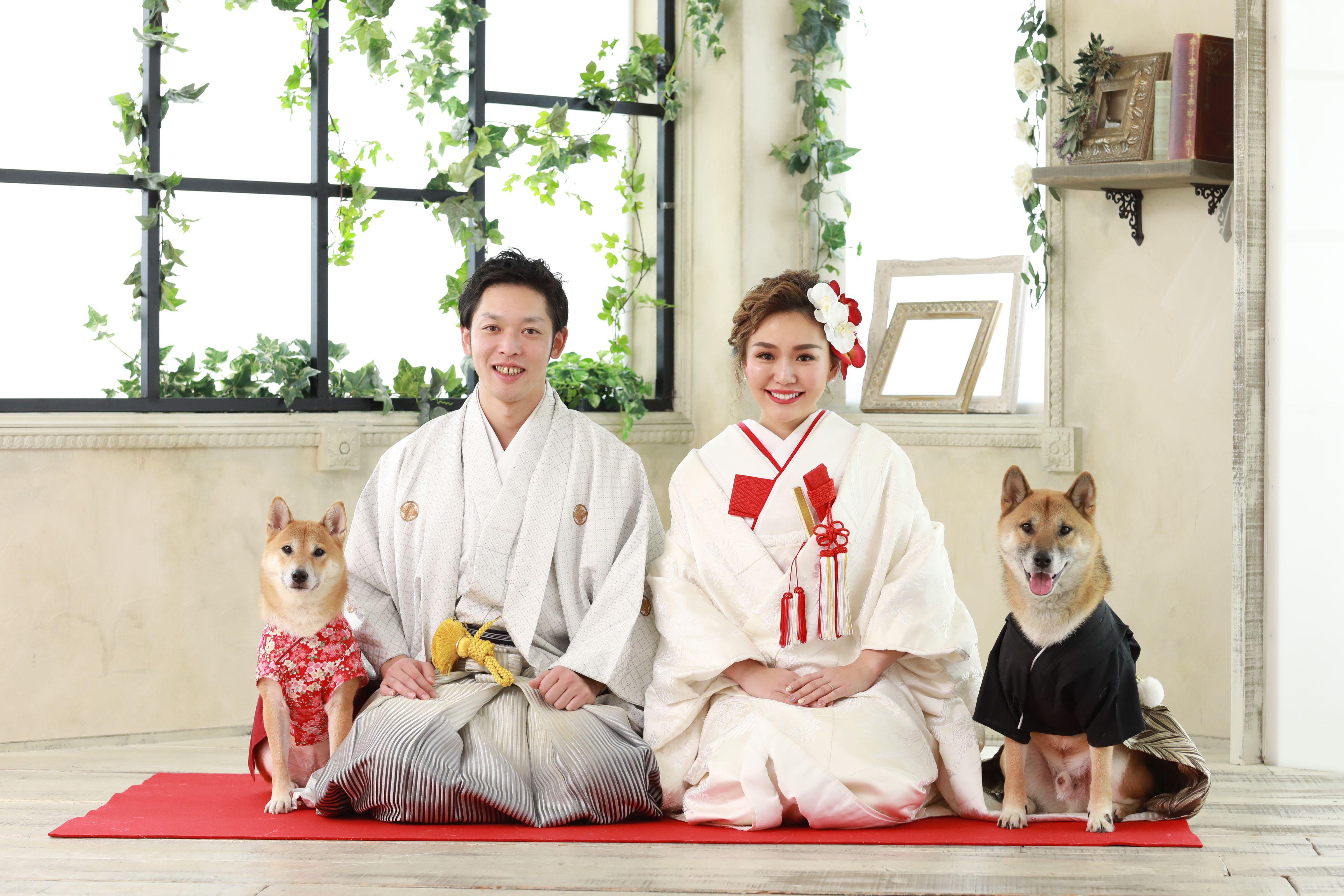 みんなで正座だワン 結婚式 ペット ウェディングフォト 結婚式 前撮り ポーズ 和装