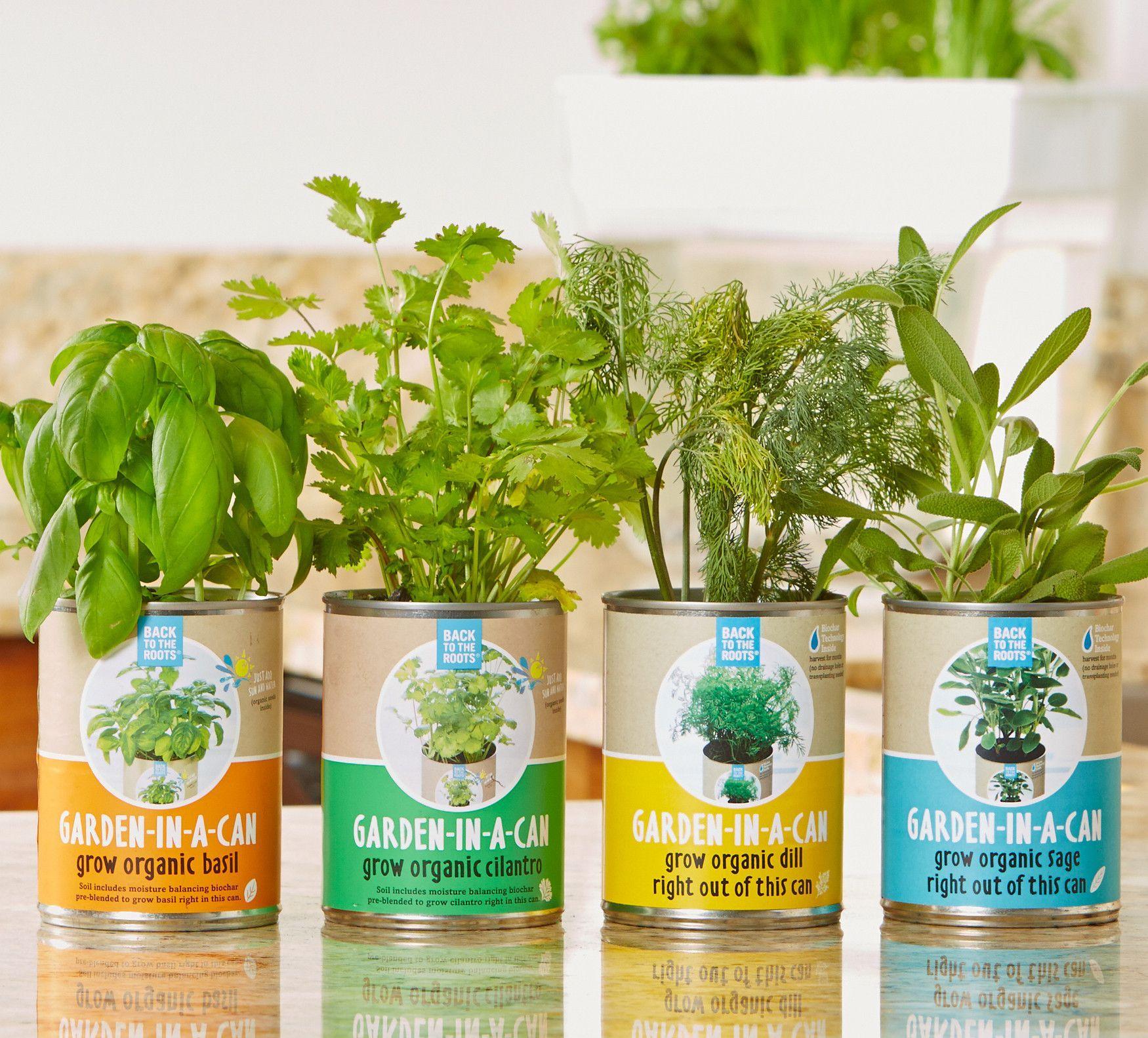 "Garden-in-a-Can Set (4-pack) 10% off using code ""growfood"""