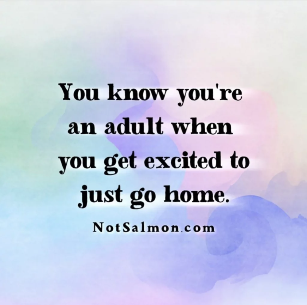 27 Funny Witty Quotes About Life, Work, Friends and Love