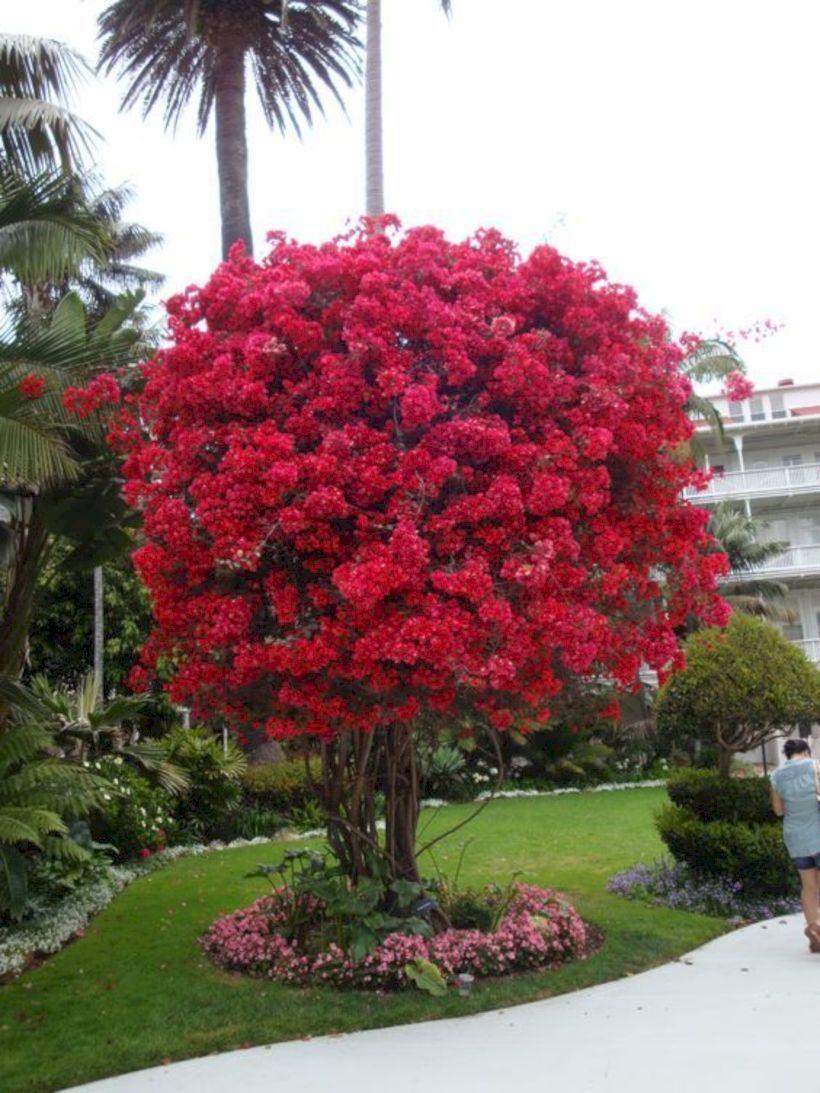 Piccoli Alberi Da Giardino 33 gorgeous and creative flower bed ideas for your garden