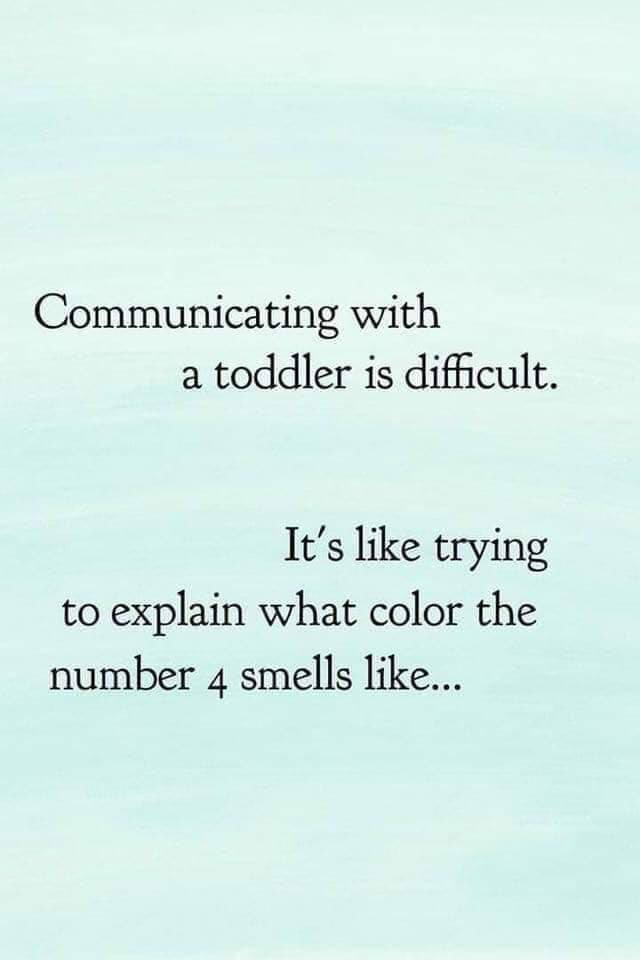 20 Toddler Memes That Sum Up What It S Like To Parent A Toddler Funny Mom Quotes Mom Life Quotes Mom Quotes