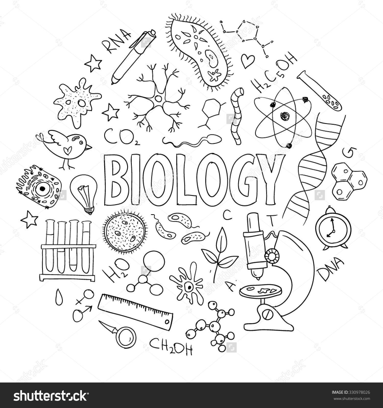 Equipment Biology Vector School Design Drawn Hand
